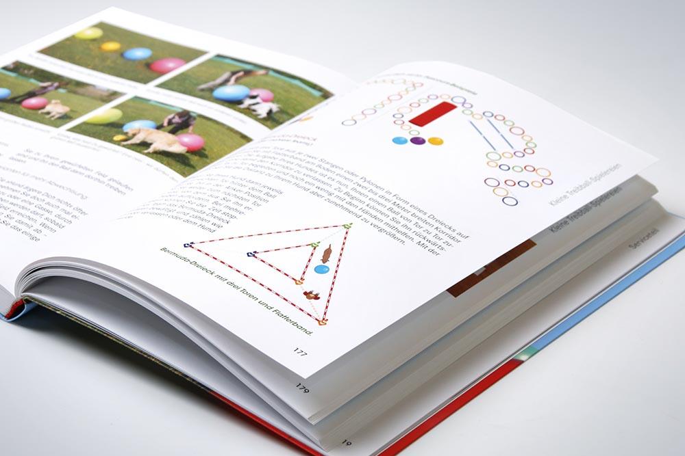 Illustrationen für Treibballbuch